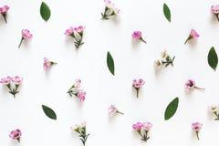 Arranjo floral de cima de Imagem de Stock Royalty Free