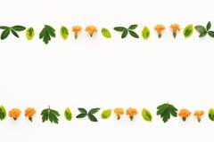 Arranjo floral no fundo branco Imagens de Stock Royalty Free