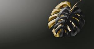 Arranjo tropical preto e do ouro das folhas no fundo escuro do inclinação com espaço da cópia Projeto botânico exótico criativo m imagem de stock