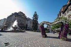 Arranjos florais e fonte em Victory Square, Timisoara, R Fotos de Stock
