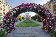 Arranjos florais em Timisoara Foto de Stock Royalty Free
