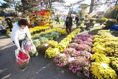 Arranjos florais no cemitério Fotos de Stock