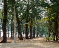 Arraste na maneira de Leamsala à caverna de Phraya Nakorn, Tailândia naturalizado foto de stock