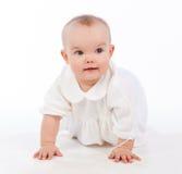 Arrastre del bebé, aislado en el fondo blanco Foto de archivo