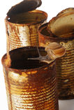 Arrastre del caracol Foto de archivo libre de regalías