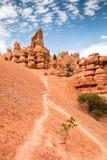 Arrastre la visión desde el barranco rojo de la roca, Nevada/roca roja fotografía de archivo libre de regalías