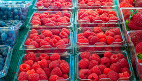 Array of berries. Assortment of fresh berries on display at a produce market Stock Images