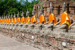 Array of Buddhas in meditation Royalty Free Stock Photography