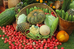 Array of fruit and vegetables. Take a photo at Nakhon Panom province, Thailand Stock Photo