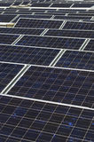 Array Of Photovoltaic Panels Stock Photography