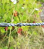 Industrial twisted wire focused in front of plants royalty free stock photos