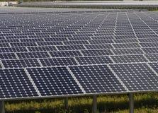 Array of solar panels. Array of modern solar panels outdoors stock photos