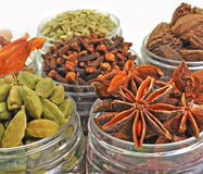 Array of spices Stock Images
