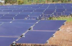 Array of  thin film solar cells or amorphous silicon solar cells or photovoltaics in solar power plant turn up skyward absorb the