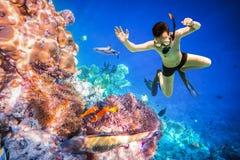 Arrecife de coral del Océano Índico de Snorkeler Maldivas Fotos de archivo