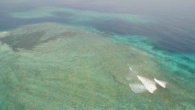 Arrecife de coral del paisaje marino en el mar metrajes