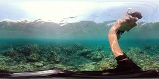 Arrecife de coral y pescados tropicales vr360 metrajes