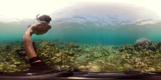 Arrecife de coral y pescados tropicales vr360 almacen de metraje de vídeo