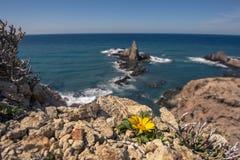 Arrecife de Las Sirenas, σε Cabo de Gata, Ισπανία Στοκ εικόνα με δικαίωμα ελεύθερης χρήσης