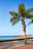 Arrecife Lanzarote Playa del Reducto beach. In Canary Islands Royalty Free Stock Image