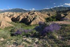 Arredores em Quirguizistão, montanhas do lago Issyk Kul de Tian Shan Foto de Stock Royalty Free