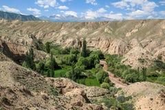 Arredores em Quirguizistão, montanhas do lago Issyk Kul de Tian Shan fotografia de stock