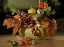 Arreglo 2 del otoño Fotos de archivo libres de regalías