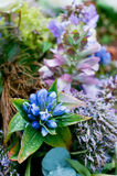 Arreglo azul para el entierro Foto de archivo