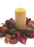 Arreglo colorido de los conos del pino y de las hojas de la caída Fotografía de archivo libre de regalías