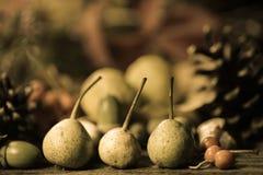 Arreglo con las frutas de la caída Foto de archivo libre de regalías