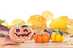 Arreglo de Halloween con la galleta y las calabazas Fotos de archivo