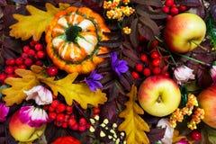 Arreglo de la acción de gracias con la calabaza decorativa, manzanas, caída r Foto de archivo