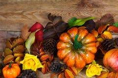 Arreglo de la acción de gracias con estafa de la calabaza anaranjada, de la manzana y del pino Imágenes de archivo libres de regalías