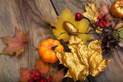 Arreglo de la acción de gracias con las hojas y las calabazas de oro Imagenes de archivo