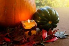 Arreglo de la acción de gracias; Tema del otoño Imagenes de archivo
