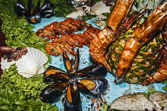 Arreglo de la comida 15 Imagenes de archivo