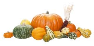 Arreglo de la cosecha del otoño Fotos de archivo libres de regalías