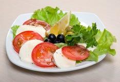 Arreglo de la mozarela y de tomates. Fotos de archivo