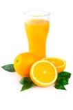 Arreglo de la naranja Fotografía de archivo libre de regalías