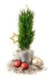 Arreglo de la Navidad Foto de archivo