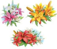 Arreglo de las flores de los lirios Fotos de archivo libres de regalías