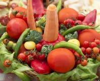 Arreglo de las verduras Fotos de archivo libres de regalías