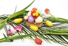 Arreglo de Pascua con los huevos y el resorte de las flores Imágenes de archivo libres de regalías
