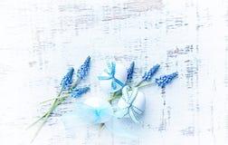 Arreglo de Pascua de los huevos de Pascua y de la uva HyacinthFflowers; Arreglo plano de la endecha Fotos de archivo