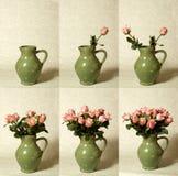 Arreglo de secuencia de las flores Fotos de archivo