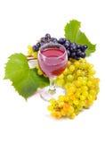 Arreglo de uvas Imagenes de archivo
