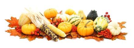 Arreglo del otoño Imagen de archivo libre de regalías