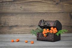 Arreglo del otoño en fondo de madera Imágenes de archivo libres de regalías