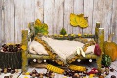 Arreglo del otoño para el nuevo bebé y la fotografía del bebé Fotos de archivo libres de regalías