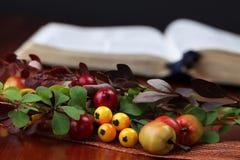 Arreglo del otoño y la biblia Fotografía de archivo libre de regalías
